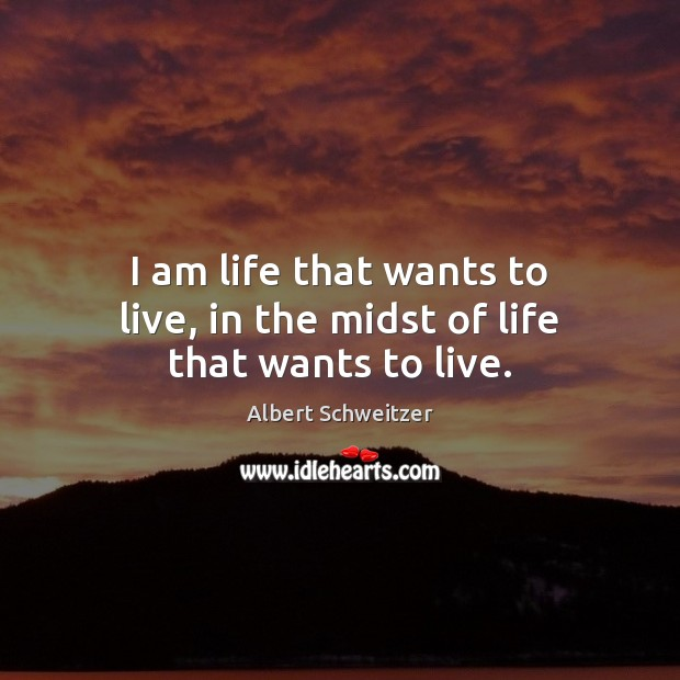 Image, I am life that wants to live, in the midst of life that wants to live.