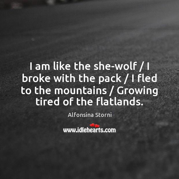 I am like the she-wolf / I broke with the pack / I fled Image