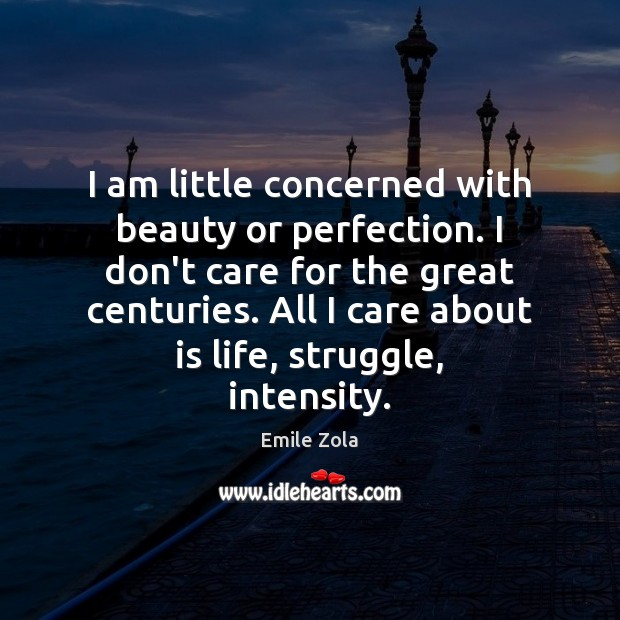 I am little concerned with beauty or perfection. I don't care for Image