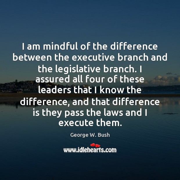 Image, I am mindful of the difference between the executive branch and the