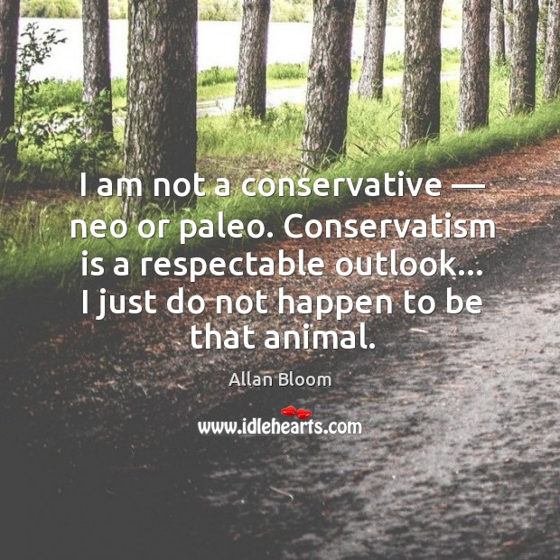 I am not a conservative — neo or paleo. Conservatism is a respectable Image