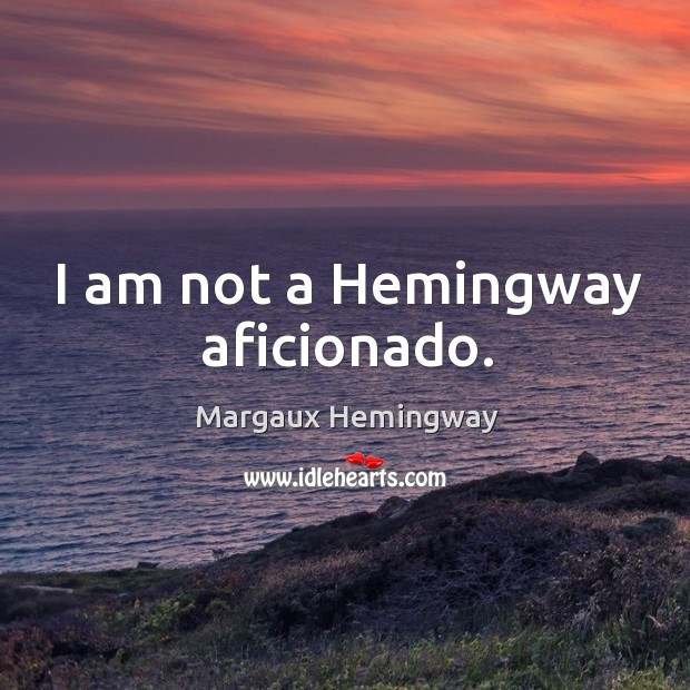 Image, I am not a hemingway aficionado.