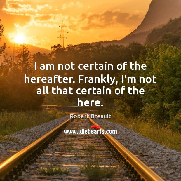Image, I am not certain of the hereafter. Frankly, I'm not all that certain of the here.