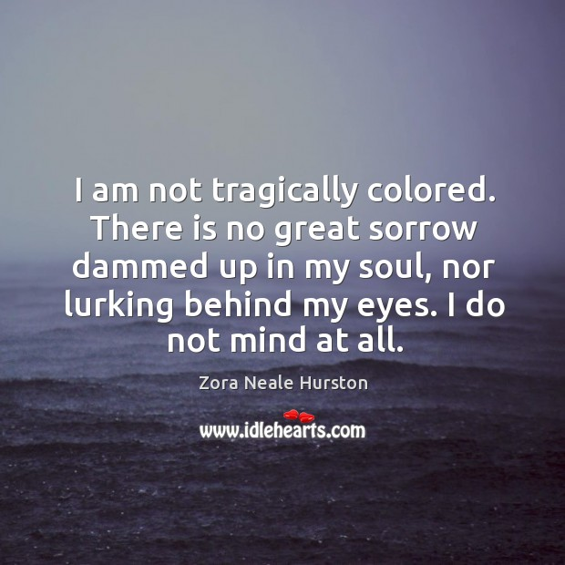 I am not tragically colored. There is no great sorrow dammed up Image