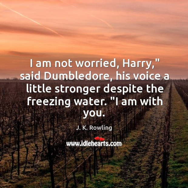 """I am not worried, Harry,"""" said Dumbledore, his voice a little stronger Image"""