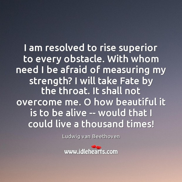I am resolved to rise superior to every obstacle. With whom need Ludwig van Beethoven Picture Quote
