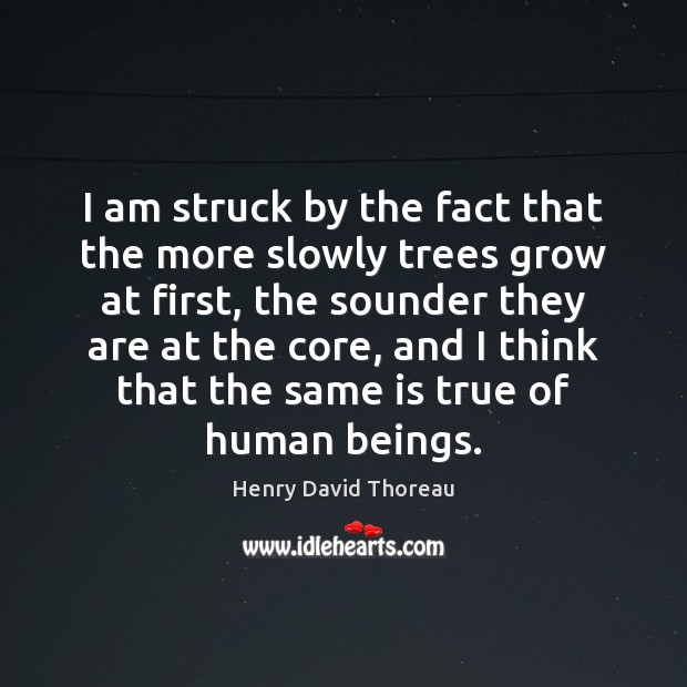 I am struck by the fact that the more slowly trees grow Image