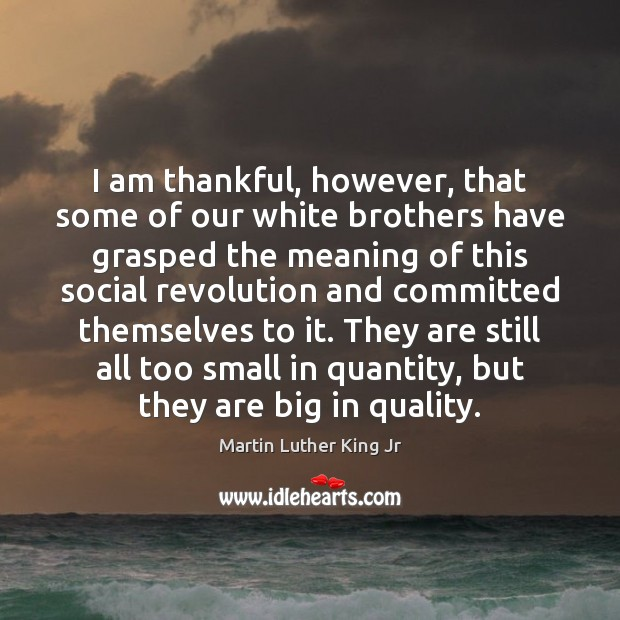 I am thankful, however, that some of our white brothers have grasped Thankful Quotes Image