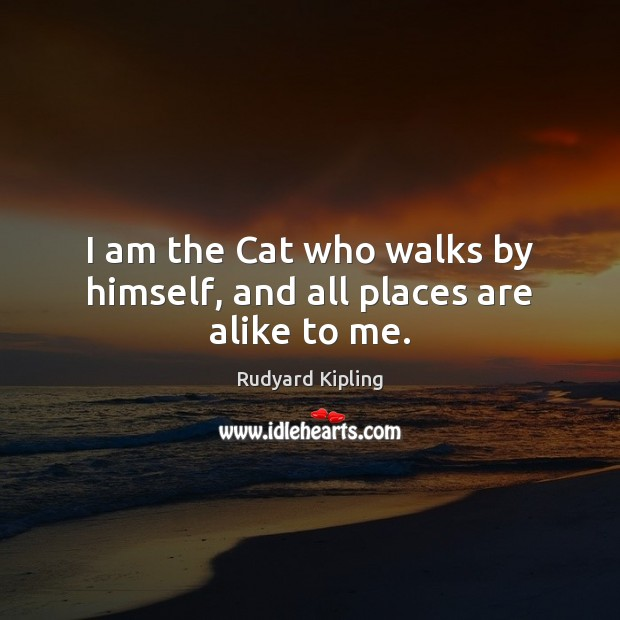 Image, I am the Cat who walks by himself, and all places are alike to me.