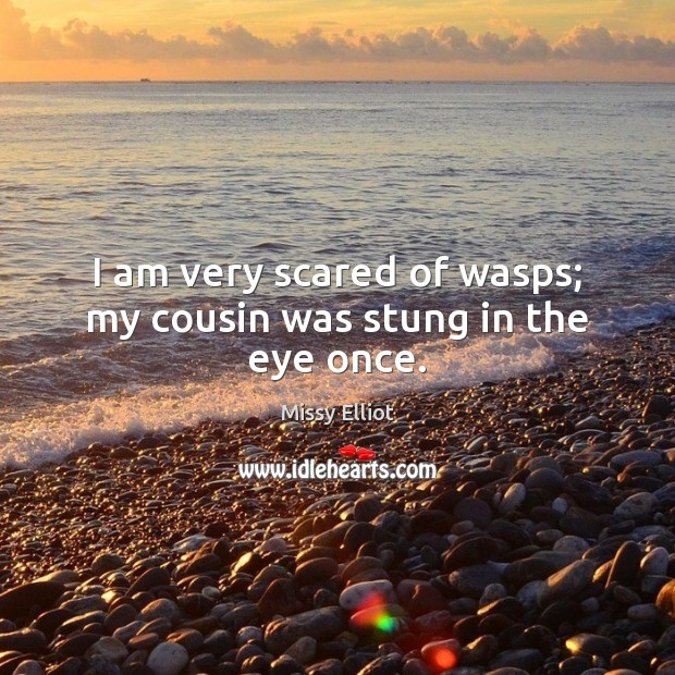 Image, I am very scared of wasps; my cousin was stung in the eye once.