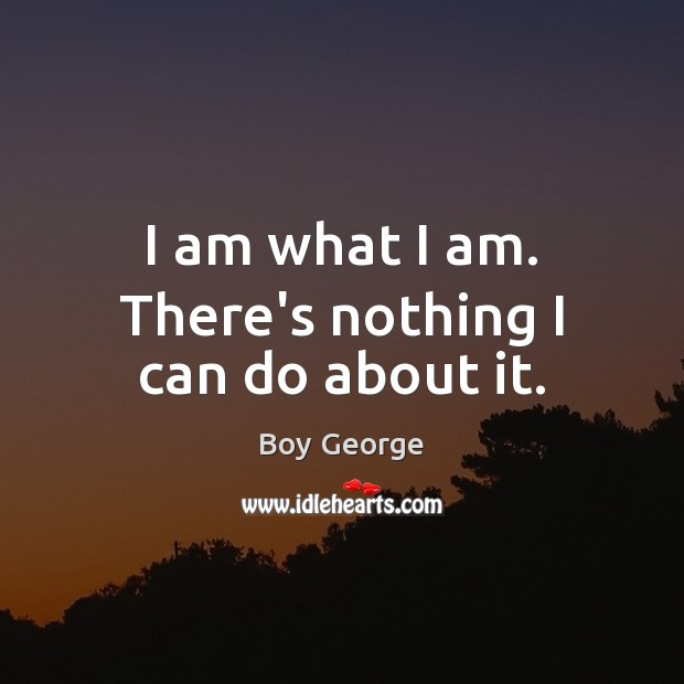 I am what I am. There's nothing I can do about it. Boy George Picture Quote