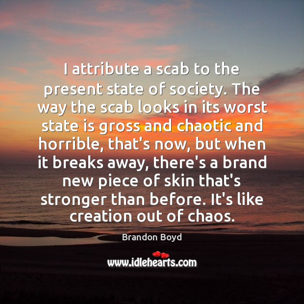 I attribute a scab to the present state of society. The way Brandon Boyd Picture Quote