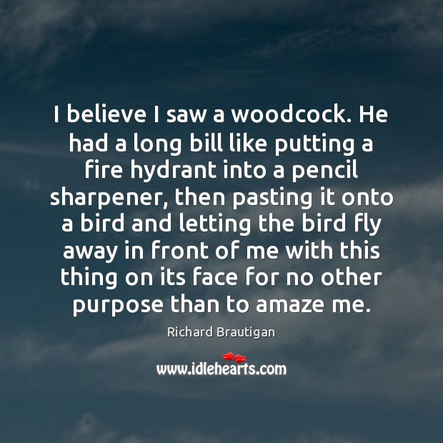 Image, I believe I saw a woodcock. He had a long bill like