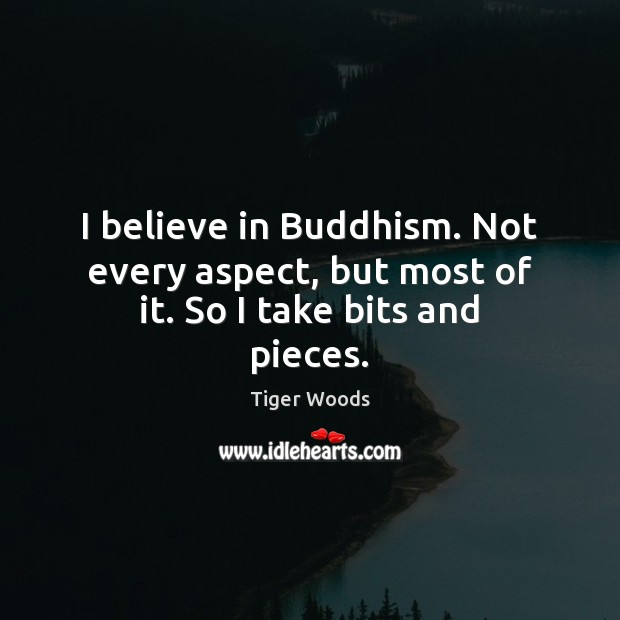 I believe in Buddhism. Not every aspect, but most of it. So I take bits and pieces. Tiger Woods Picture Quote