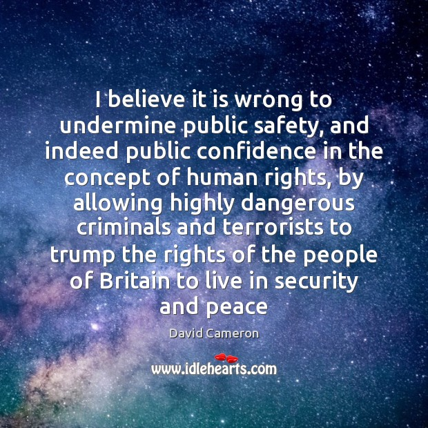 I believe it is wrong to undermine public safety, and indeed public David Cameron Picture Quote
