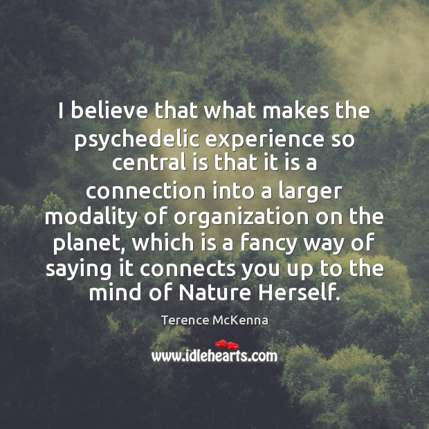 I believe that what makes the psychedelic experience so central is that Image