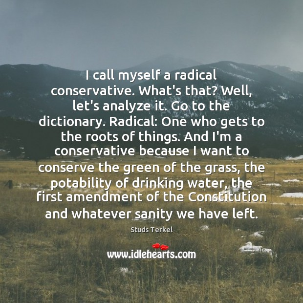 I call myself a radical conservative. What's that? Well, let's analyze it. Image