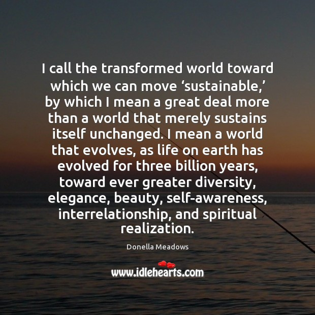 I call the transformed world toward which we can move 'sustainable,' by Donella Meadows Picture Quote