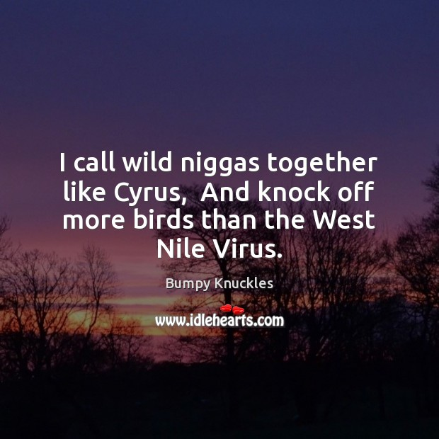 Image, I call wild niggas together like Cyrus,  And knock off more birds