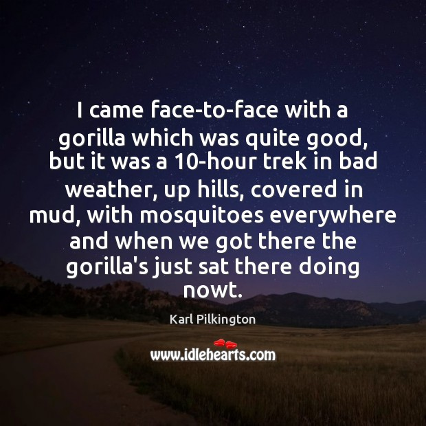 Image, I came face-to-face with a gorilla which was quite good, but it