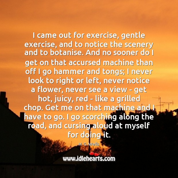 I came out for exercise, gentle exercise, and to notice the scenery H. G. Wells Picture Quote