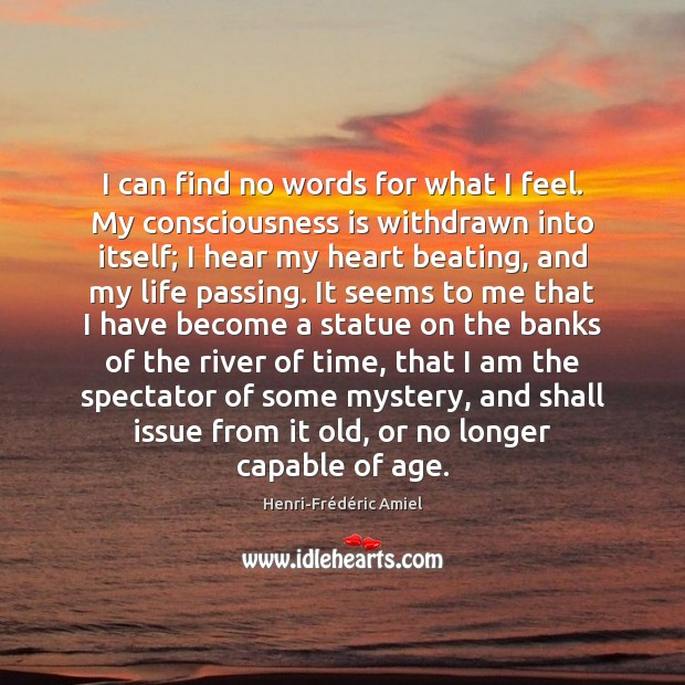 I can find no words for what I feel. My consciousness is Henri-Frédéric Amiel Picture Quote