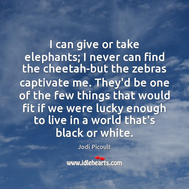 I can give or take elephants; I never can find the cheetah-but Jodi Picoult Picture Quote