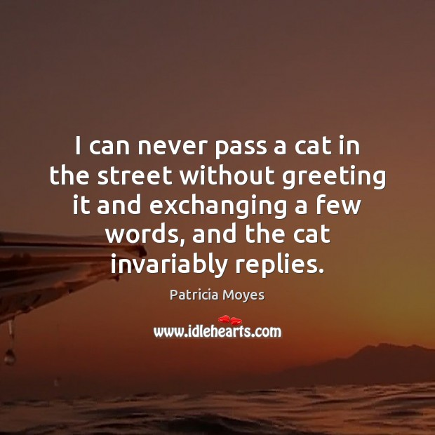 Image, I can never pass a cat in the street without greeting it