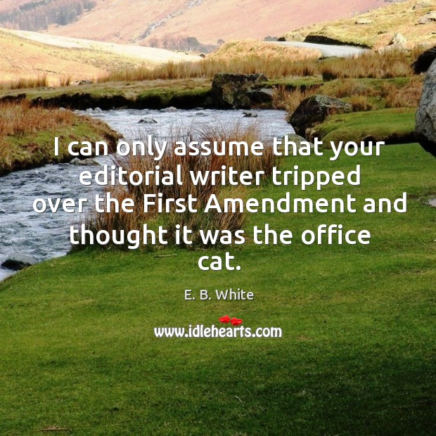 Image, I can only assume that your editorial writer tripped over the first amendment and thought it was the office cat.