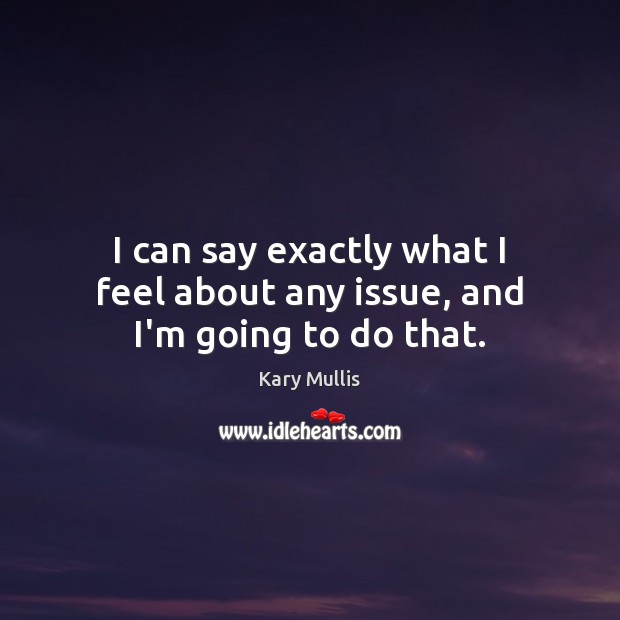 I can say exactly what I feel about any issue, and I'm going to do that. Kary Mullis Picture Quote