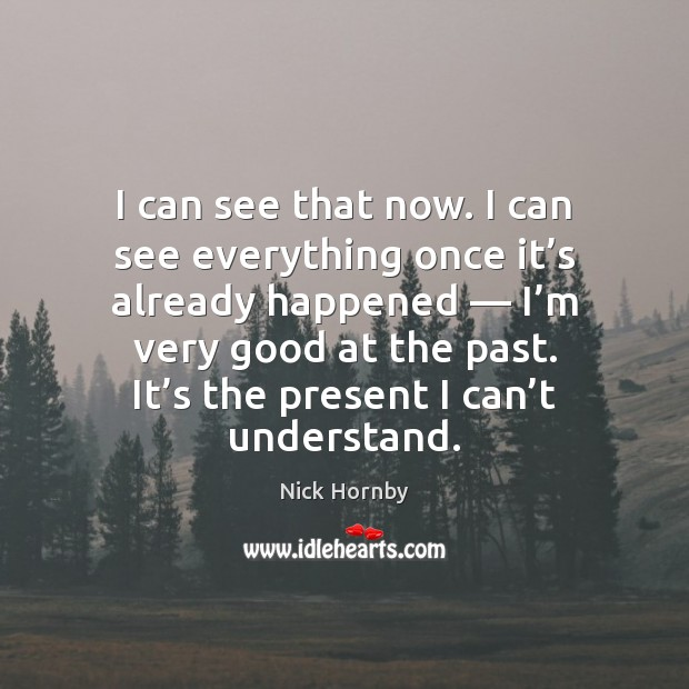 I can see that now. I can see everything once it's Nick Hornby Picture Quote