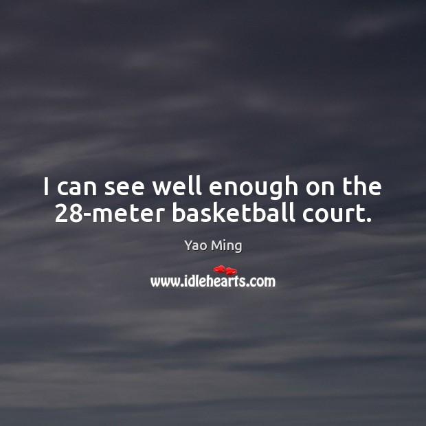 I can see well enough on the 28-meter basketball court. Image
