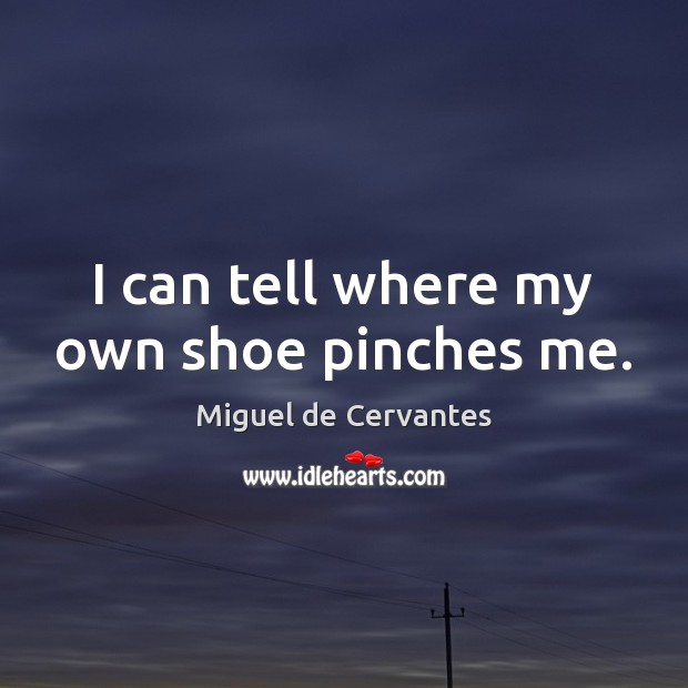 I can tell where my own shoe pinches me. Image