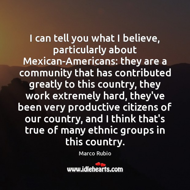 Image, I can tell you what I believe, particularly about Mexican-Americans: they are