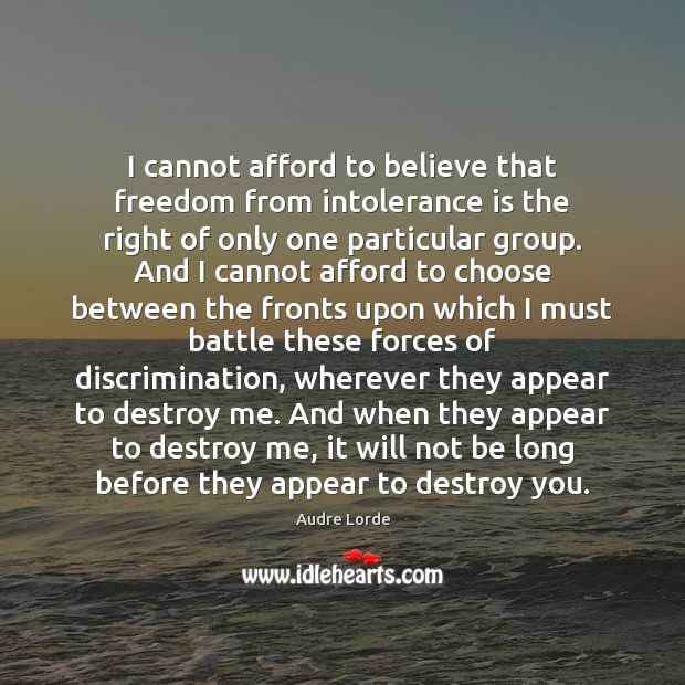 I cannot afford to believe that freedom from intolerance is the right Audre Lorde Picture Quote