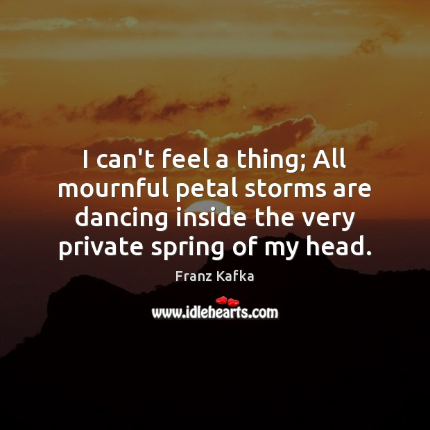 I can't feel a thing; All mournful petal storms are dancing inside Franz Kafka Picture Quote