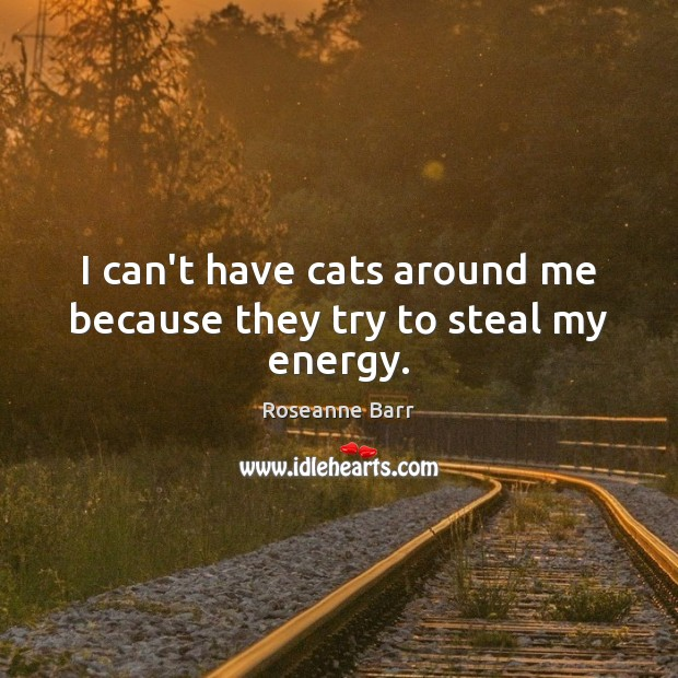 I can't have cats around me because they try to steal my energy. Roseanne Barr Picture Quote