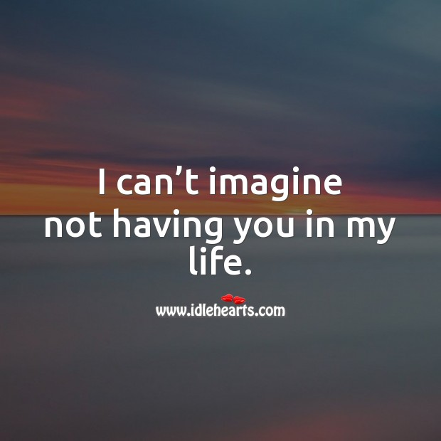 I can't imagine not having you in my life. Love Quotes Image