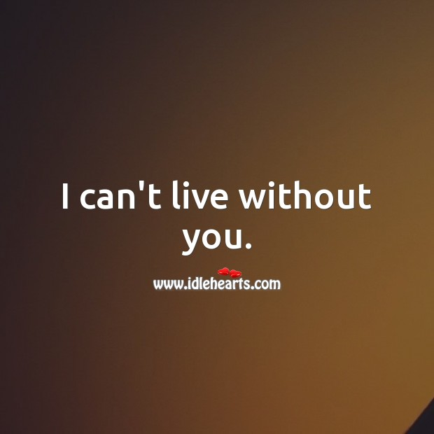 I can't live this life without you. Life Without You Quotes Image