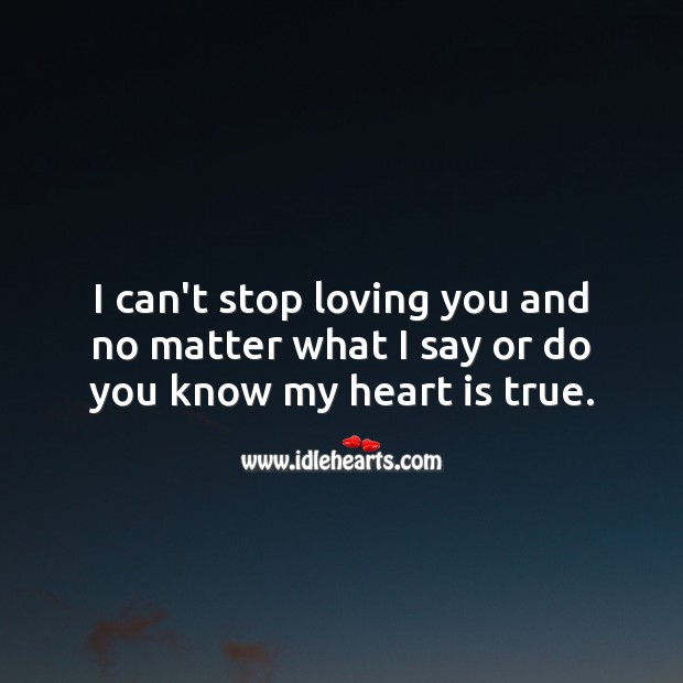 I can't stop loving you and no matter what I say or do you know my heart is true. No Matter What Quotes Image