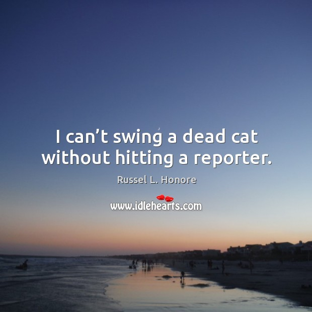 I can't swing a dead cat without hitting a reporter. Image