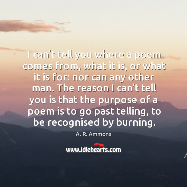 I can't tell you where a poem comes from, what it is, or what it is for: nor can any other man. Image