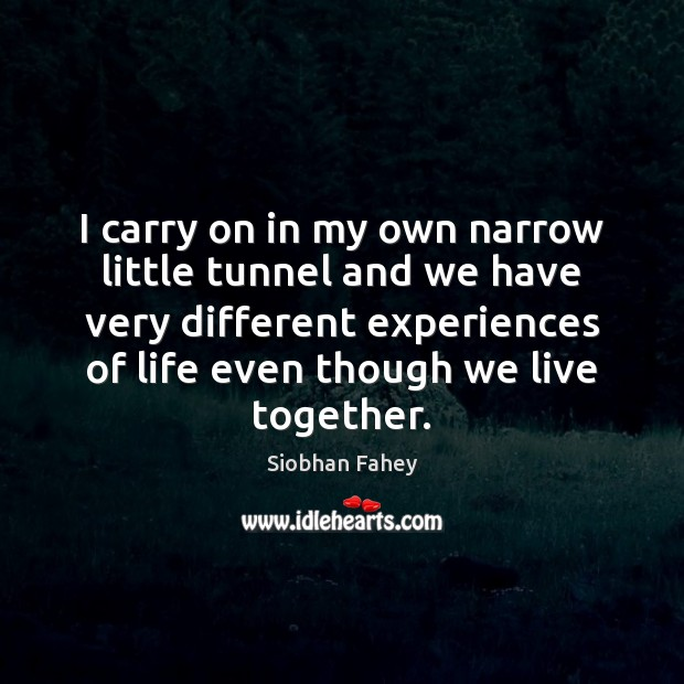 I carry on in my own narrow little tunnel and we have Siobhan Fahey Picture Quote