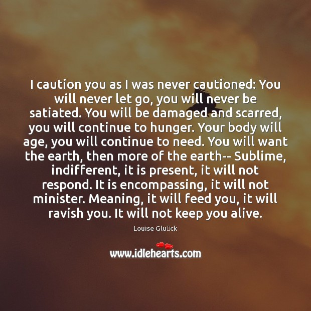 I caution you as I was never cautioned: You will never let Image