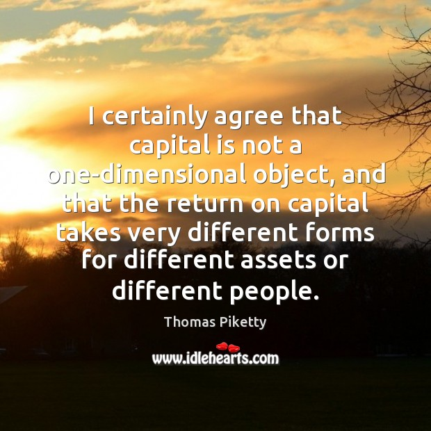 I certainly agree that capital is not a one-dimensional object, and that Image