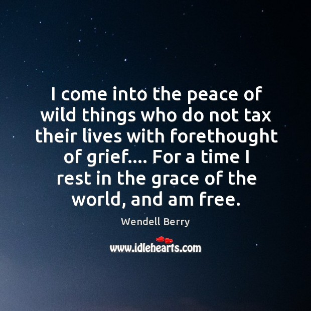 I come into the peace of wild things who do not tax Image
