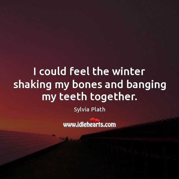 Image, I could feel the winter shaking my bones and banging my teeth together.