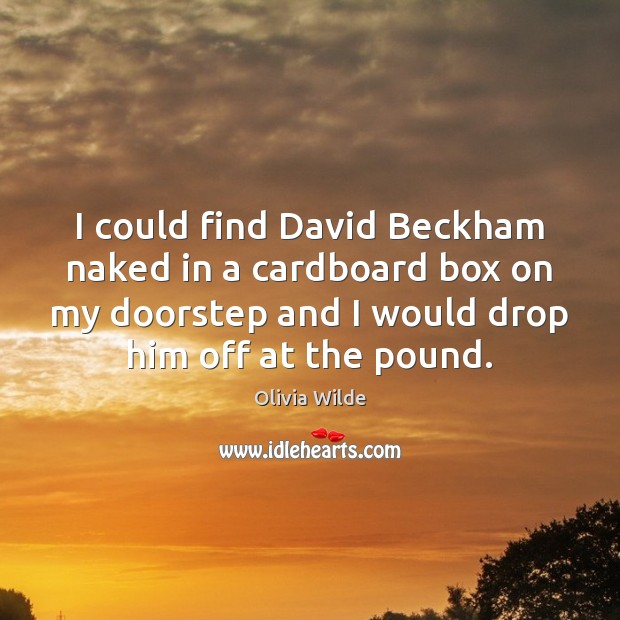 I could find David Beckham naked in a cardboard box on my Olivia Wilde Picture Quote