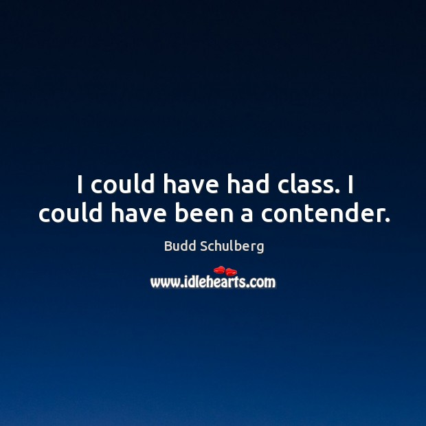 I could have had class. I could have been a contender. Image