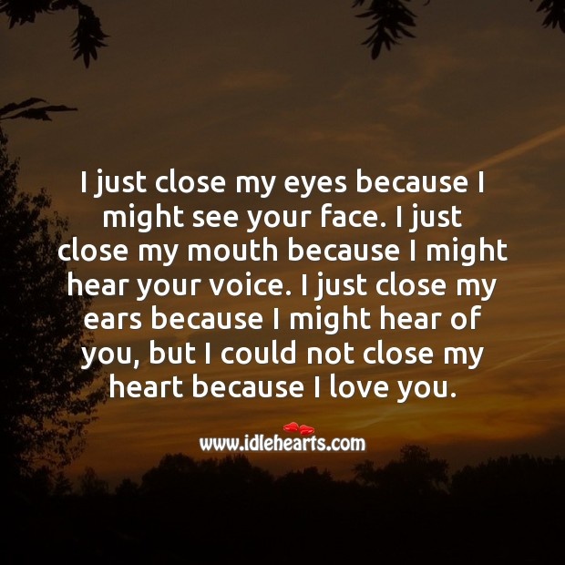 I could not close my heart because I love you. I Love You Quotes Image